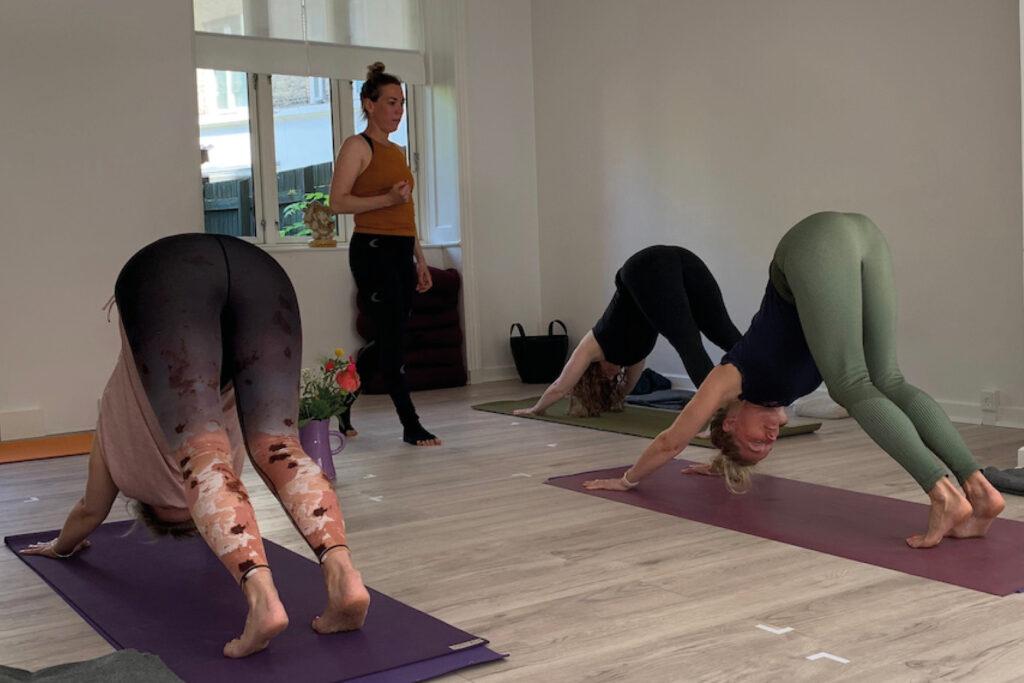Hatha Yoga på Amager